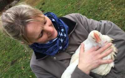 NEU: Glückliche Hühner vom Grünthaler Hof