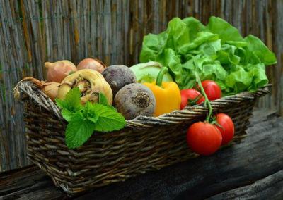Gemüsebau Meier