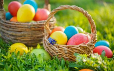 Ei, Ei – Oster-Eier vom Büchelberg
