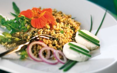 Rezept der Woche: Buchweizensalat mit Ziegenkäse